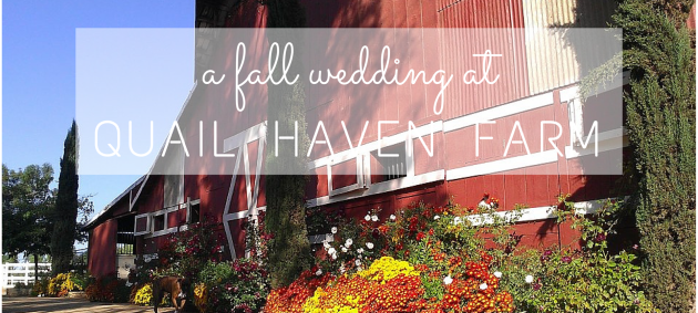 a fall wedding at